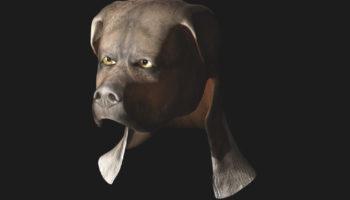 3D printed dog mask